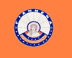 ae giannena logo