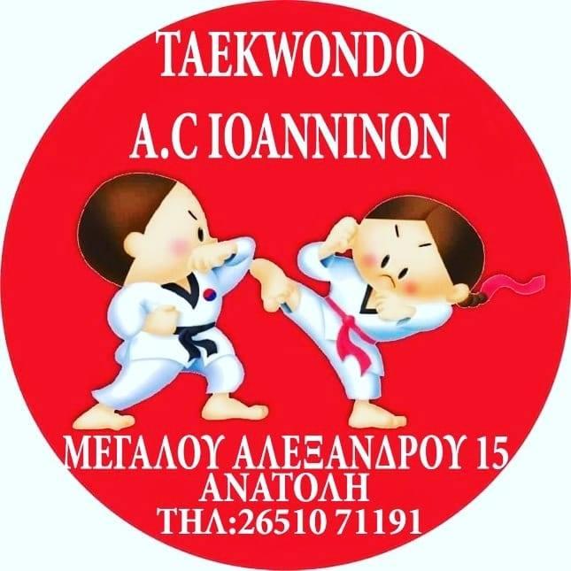 taekwondo ioanninon